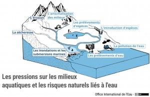 Schéma des pressions et des risques aux milieux aquatiques